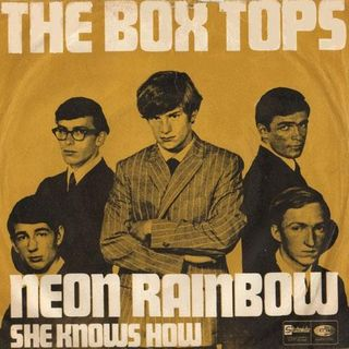 The Box Tops - Neon Rainbow - She Knows How
